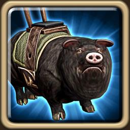 Draken-loving Boar.png
