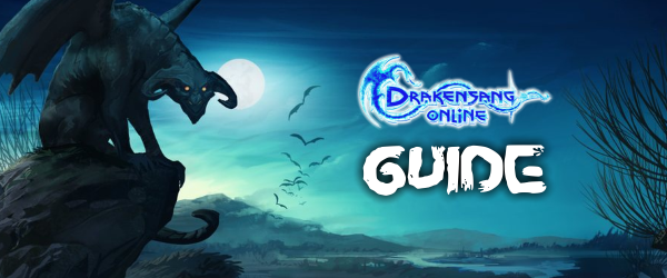 DSO Guide banner.png
